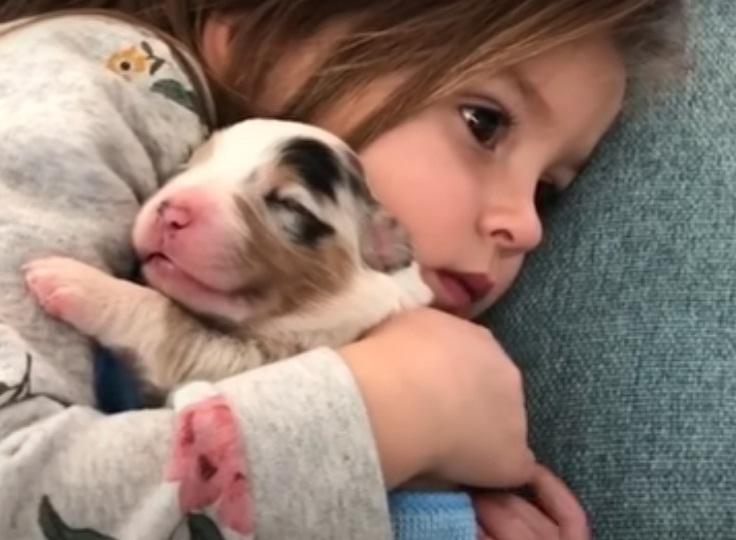 Mọi đứa trẻ đều xứng đáng có cơ hội lớn lên với tình yêu thương của một chú chó